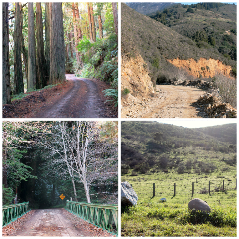 OldCoastRoad Collage